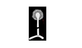 MICOTOXINAK