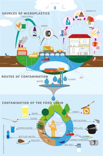 diagrama fuente plásticos