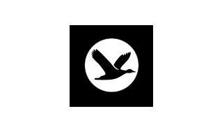 influencia aviar